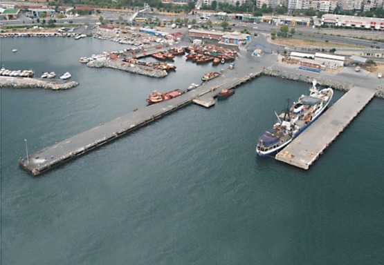 Zeytinburnu Wharf Construction and Land Distribution